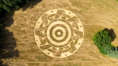 Field drawing discovered in Germany