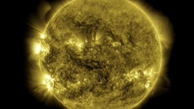 Photo of NASA has published a 10-year solar observation cycle