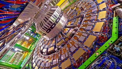 Photo of New particle at the Large Hadron Collider