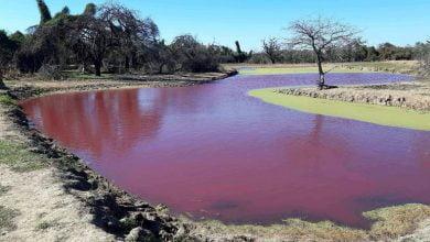 Paraguay rel lake