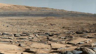 Photo of Mars was inhabited