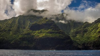 Rich people are buying up islands to hide from the coronavirus pandemic