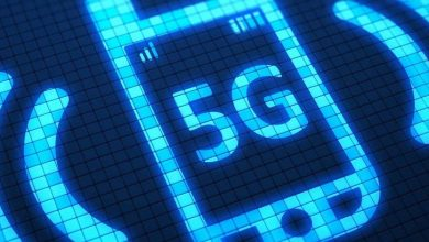 Photo of Scientists tested the harm of 5G on fish
