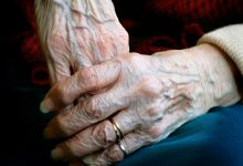 The main mechanisms of aging and longevity are revealed