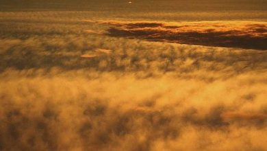 An unusual giant wall of clouds discovered on Venus