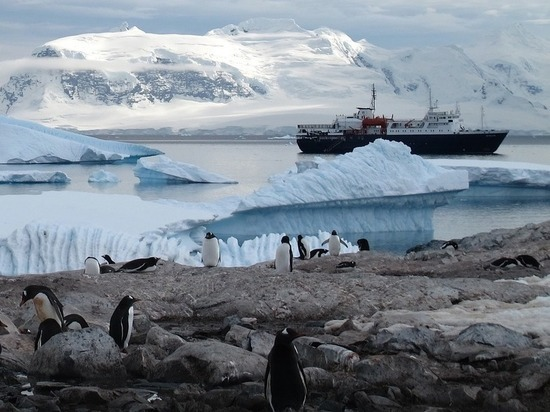 Antarctica will lose ice cover by 2035