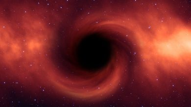 Australia they urgently began to build a telescope to observe black holes