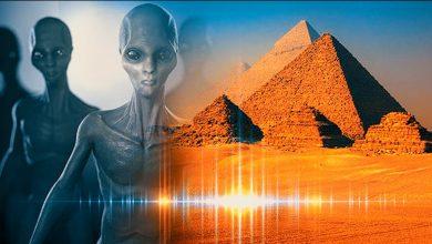 Elon Musk said that the pyramids were built by aliens