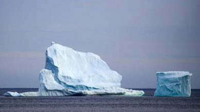 Iceberg the size of Manhattan breaks off a Canadian glacier