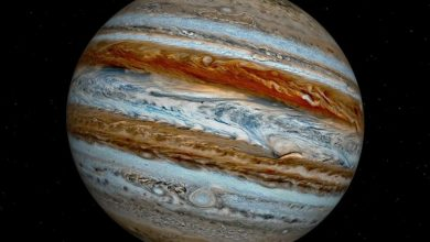 Jupiter is to blame for the absence of life on six planets