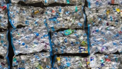 Microplastic found in human tissue scientists warn of risks