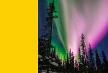 Seismographs sensed the polar lights