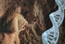Some people possess DNA from an unknown ancestor