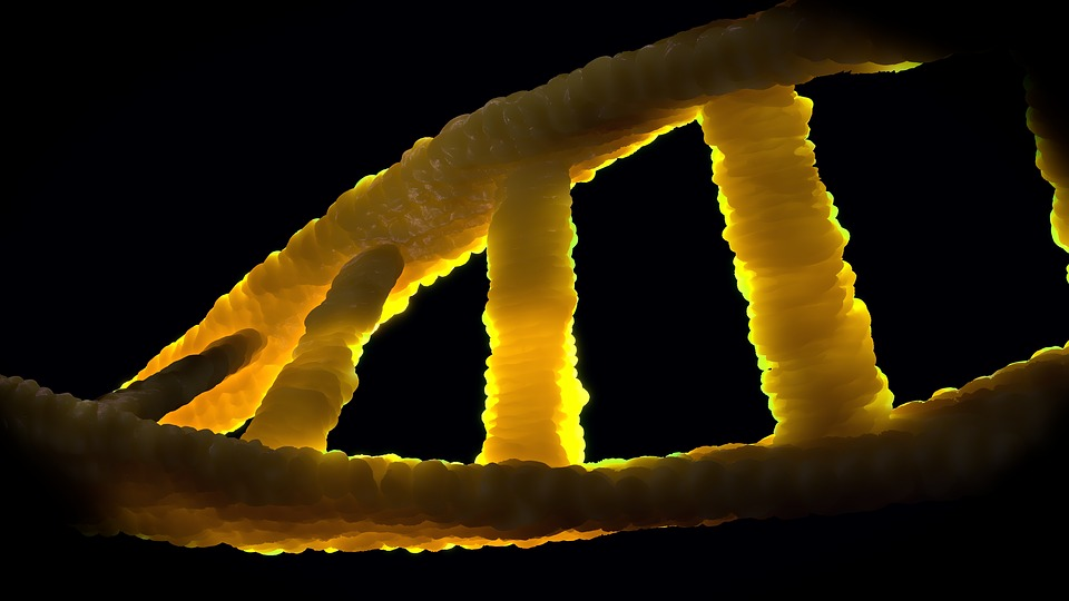 alien DNA found in modern human genome