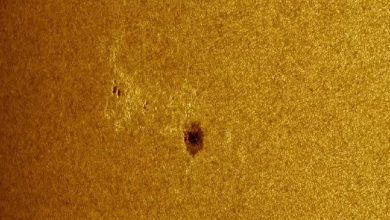 huge spot has formed on the Sun it can strike the Earth