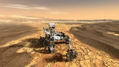Acids could destroy evidence of life on Mars