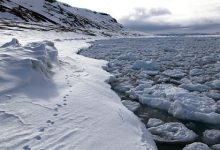 Arctic ice thinner