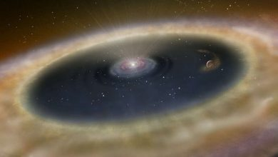 Evolution of the chemical composition of protoplanetary disks
