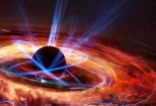 Expert black holes destroy information