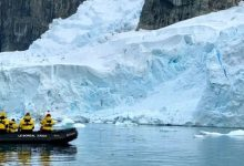 Scientists show how Antarctica can turn green