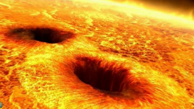 The sun is covered with black spots scientists talked about the danger