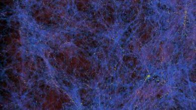 dark matter day 750x422 1