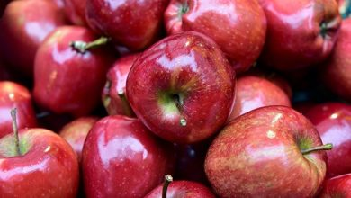 what happens if you eat an apple every day