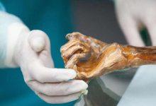 Cave of bones the strangest archaeological find