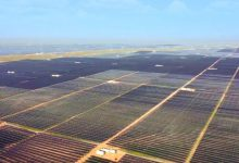 Chinas largest solar power plant launched