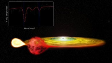 Einsteins theory of relativity is observed in distant stars