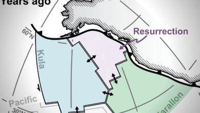 Lost tectonic plate discovered under Canada