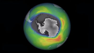 The ozone hole over Antarctica has become much deeper and wider in 2020