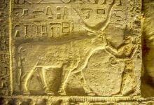 egypt scene afp 12 15 18