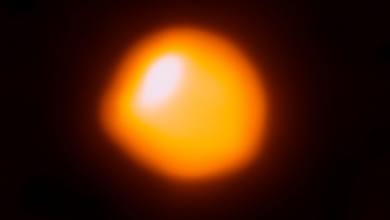 when the Betelgeuse star will explode