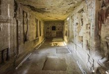Archaeologist has opened an Egyptian tomb and now cats bypass him