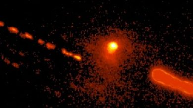 Astronomers have discovered a rare hybrid of a comet and an asteroid