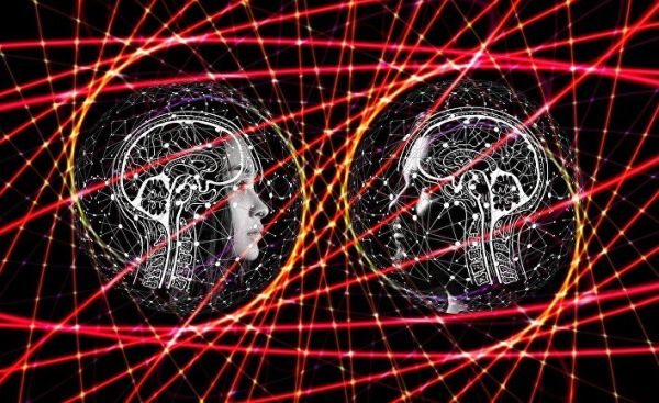 Can a brain grown in a laboratory be conscious