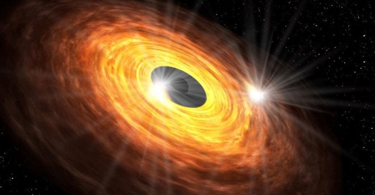 Fast spinning black holes can have hair