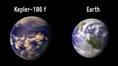 NASA discovered Earths double it could have life