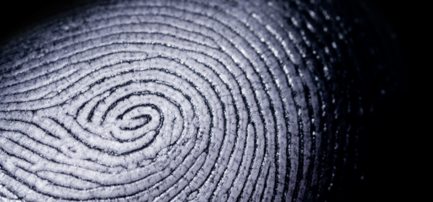 Scientists have finally figured out why fingerprints are needed