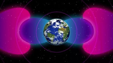 artificial barrier has been discovered in space that protects the Earth