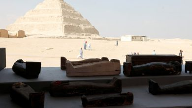 50 wooden sarcophagi Egyptian archaeologists make a major find