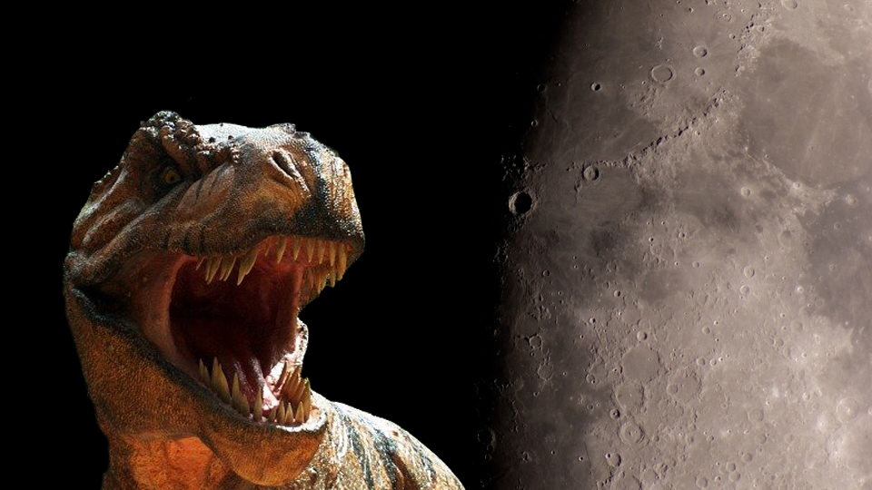 Journalist and geophysicist are sure that there are dinosaur bones on the moon