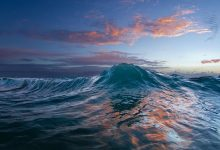 Ocean warming reaches new all time highs