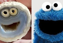 A mineral similar to Sesame Street Cookie was discovered in Brazil