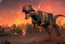 An end is made to the question of mass extinction on Earth 66 million years ago