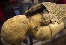 Archaeologists have found an unusual mummy they have not seen anything like it before