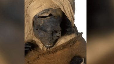 Archaeologists have studied the mummy of the Egyptian pharaoh found out the horrifying details of his death