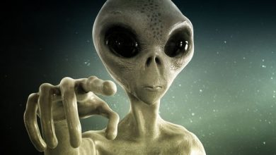 Astronomer aliens think humans are stupid