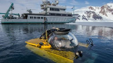 Diving into an under ice abyss off the coast of Antarctica 1